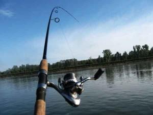 Какой спиннинг лучше выбрать для рыбалки