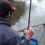 Матчевая ловля рыбы тактика и оснастка