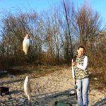 Поплавочная ловля осенью