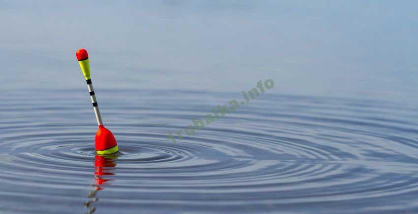 Ловля летом на поплавочную удочку
