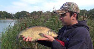 Ловля фидером на озере