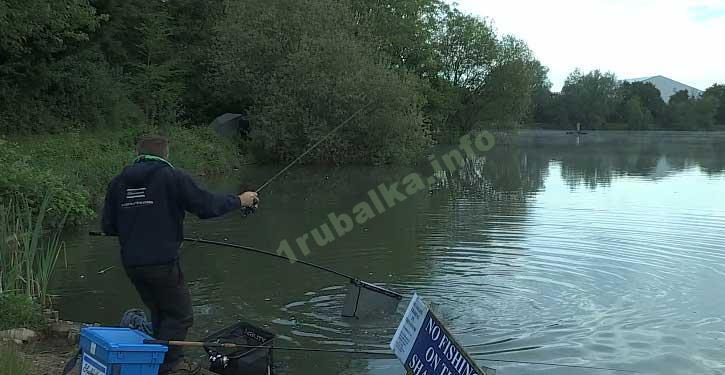 ловля карпа в сентябре на пруду видео на фидер