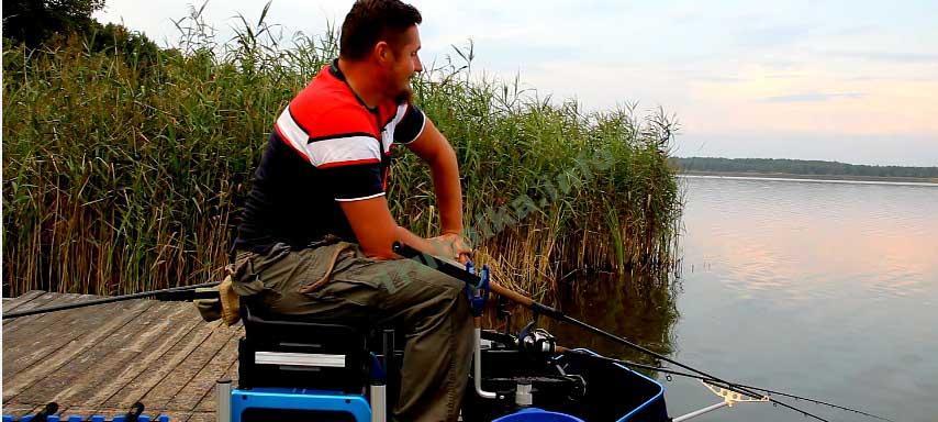 ловля фидером на озере прикормка