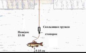 Монтаж жерлицы на судака