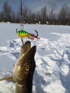 Ловля щуки на балансир на течении