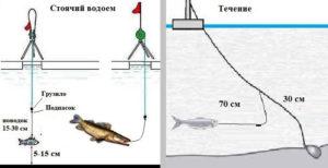 снасти для ловли судака на тюльку зимой на жерлицы